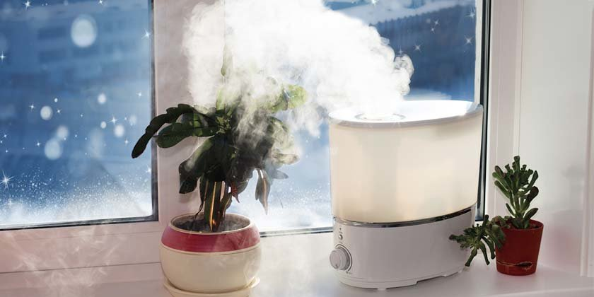 Use Humidifier to Keep Your Room Moistured
