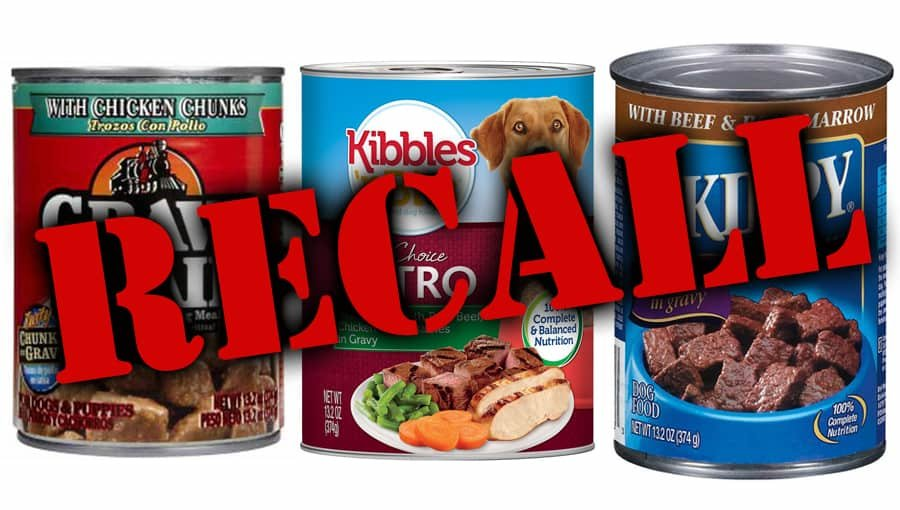 FDA Ordered the Recall of Popular Dog Food Brands
