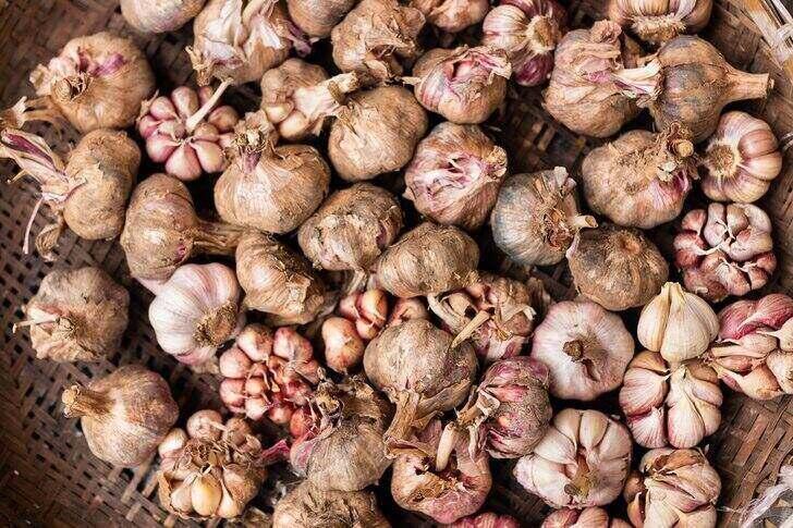 black-garlic-2
